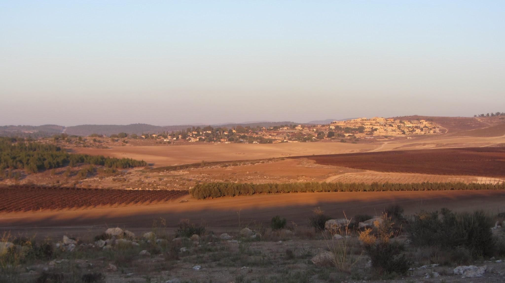 paysage 2-terre sainte