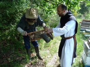aiguebelle - moines - abeilles