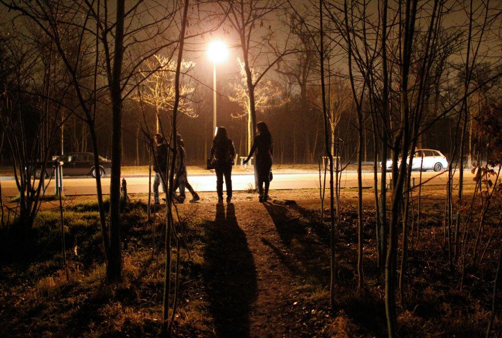 булонский лес ночью фото соблюдать элементарные