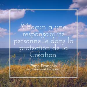 création - laudato si - pape françois - écologie
