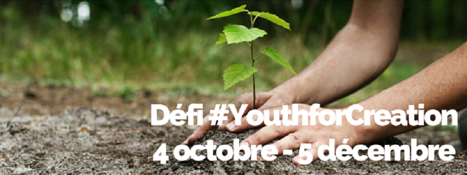 bandeau YouthForCreation
