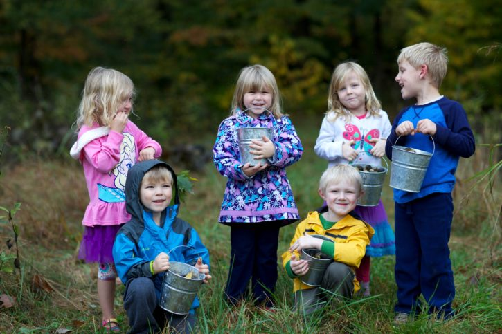 Children collect plant acorns